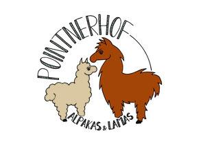 Lama Alpaka Logo Pointnerhof Alpakas Lamas Alpakawanderung Lamatrekking tiere tier Bauernhof Erlebnishof Erlebnis