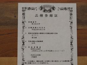 貴美錦の品種登録証