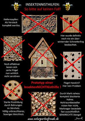 Insektenhotel Insektennisthilfe Nisthilfe Schautafel Kiefernzapfen markhaltige Stengel unsaubere Bohrungen  Negativbeispiel insect hotel nesting aid bug house Neudorff pine cone