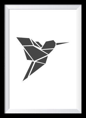 Illustration - Kolibri/Hummingbird