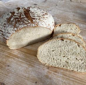 Grundkurs Brotbacken Helga Graef