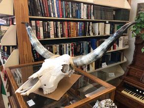 Long Horns $165.00