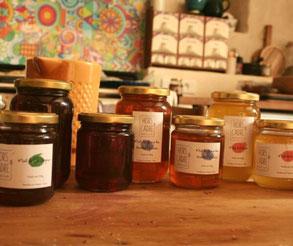 miel;apiculture;gers;bio;hors cadre apiculture;boulaur