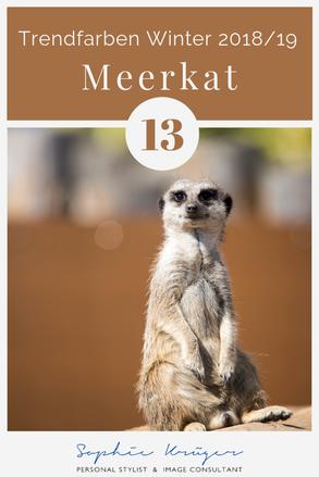 Meerkat, warme Basisfarbe für den Herbsttyp