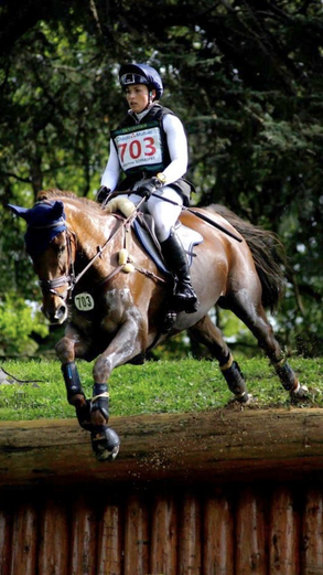 Viktor, 2019, Le Lion D 'Angers Wm der 7- jährigen VS Pferde