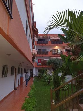 Gemütlicher Innenhof mit Palmen und Rasenfläche in der Wohnanlage