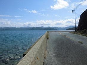 青海島 道路沿いの釣り場