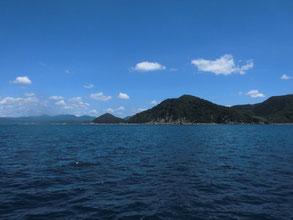 岬の先端はアオリイカの好ポイント