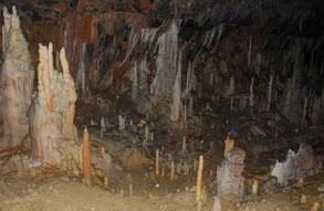 Cueva de Postojna/D.Domínguez Villar © / CENIEH