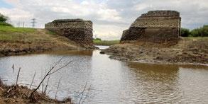 Мост в Верхнем Кузьминском водохранилище (июнь 2017 года)