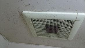 浴室・お風呂場天井のカビ