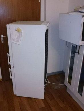 Mitten in der Nacht den Kühlschrank verschieben? Ich kenne das... Foto: Karsten