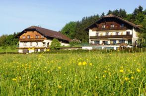 Biohotel Schiessentobel