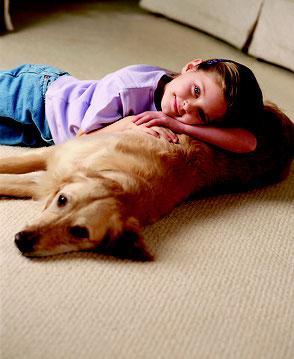 カーペット・子供部屋 Carpet Kid's Room
