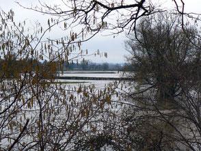 Inondations Bourbince Vitry-en-Charollais