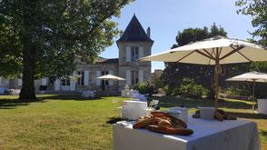 Cocktail de mariage au coeur d'un vignoble dans le Sud-Ouest de la France