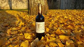 Vin rouge AOC Buzet Château La Hitte sur fond de feuilles de ginko biloba