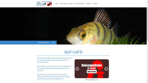 Info-Website für Sportverein