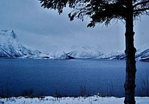 07. Februar 2014 - Vesterålen, eine Inselgruppe etwa 300 km nördlich des Polarkreises