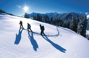 Skiurlaub Finkenberg Tux in den Ferienwohnungen Brückenhof