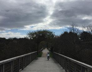 La passerelle du Marais (tout dernièrement rénovée) permet d'accéder aux Sables d'Or, puis Cap Fréhel (à 17 km d'Erquy) ; ou bien après Caroual, direction Pléneuf Val André (à 8 km d'Erquy)