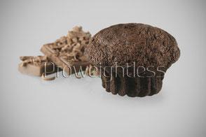 Schokoladenkuchen von Proweightless - zuckerarm und lecker