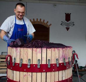 Af en toe wordt bij wijze van demonstratie nog eens met een oude wijnpers gewerkt
