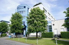 Eingang zur Hypnose Praxis, Gülsen Taycimen, Hypnose & Energiearbeit, Zürich