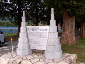 新・日本街路樹百景に認定されているメタセコイア並木