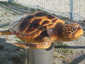 ふ化場の柵の中にあったアカウミガメの模型