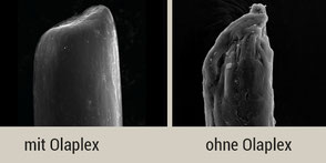 Olaplex dauerhafte Haareparatur Haarstruktur Haare reparieren gesunde Haare starke Haare