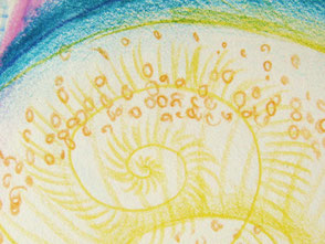 Art-thérapie : Processus d'individuation. Spirale elliptique