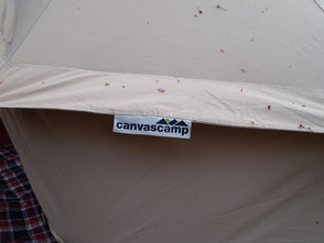 Canvascamp