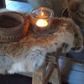 konijnenvacht
