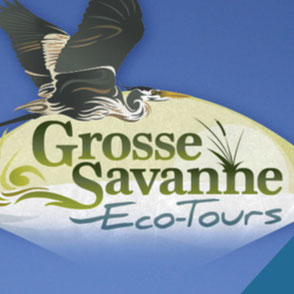 Grosse Savanne Eco-Tours Logo Design Lake Charles Louisiana
