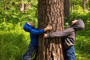 Kinder umarmen einen Baum