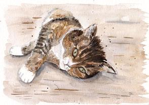 Katze Aquarell Krafttier Illustration Sterbebegleitung Erinnerungs Illustration