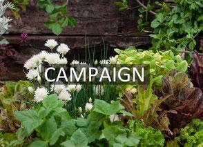 エクステリアキャンペーン・ガーデンキャンペーン・カーポートキャンペーン・ガーl電ルームキャンペーン