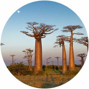 Pays d'Afrique explorés par Le Monde Cousu Main.