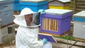 Chambres-d'hotes-la-laiterie-jean-devant-une-ruche