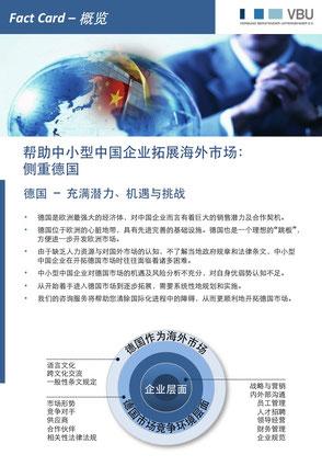 概览 (中文 pdf)