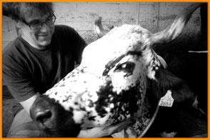 eleveur sourit étable vache ferme humbert - Du son pour changer