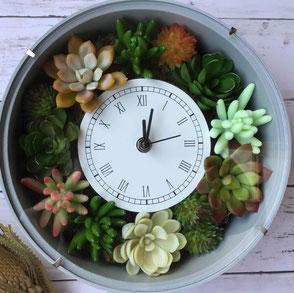 花時計  多肉植物