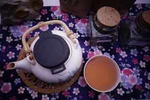 Medizinkräuter in Infus oder Dekokt - Ein Tee hilft bei vielen Wehwehchen