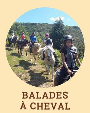 Balades à cheval - Centre de Tourisme Equestre Larrun Alde