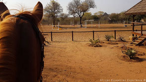 Stables outside boma