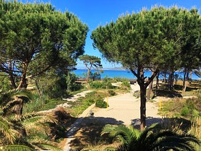 Strand Calvi Korsika