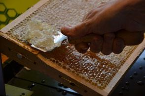 Bienenprodukte Kenzingen