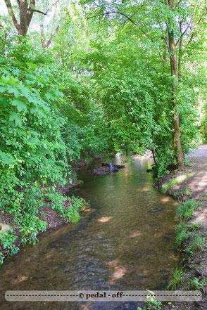 Wasser See Fluss fließend Natur Outdoor Naturfotographie bodeguero hachinger bach münchen