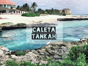 Großartiger Beach-Club mit Lagune und Cenote